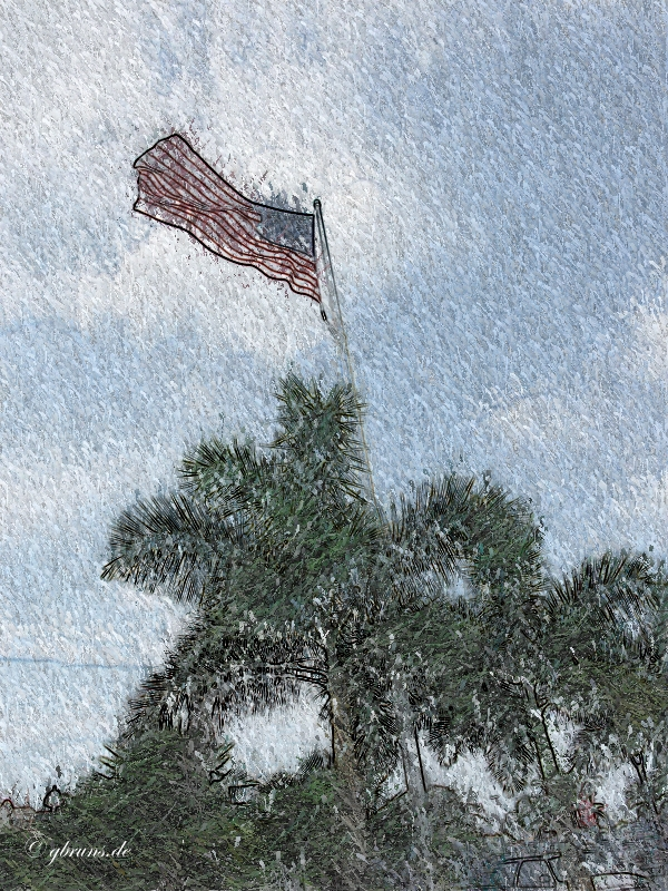 Ft. Myers, FL - Old Glory
